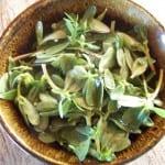 Une simple salade de pourpier avec une citronnette. Une salade verte originale et bien agréable !