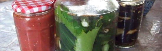concombres lacto-fermentés