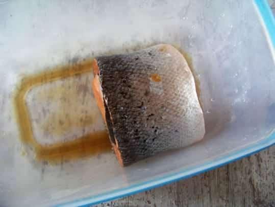 saumon roulé sous presse
