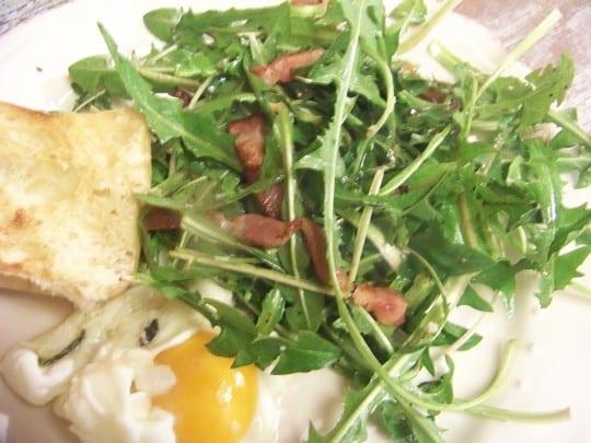 salade de pissenlits aux lardons