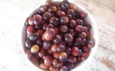 recette de olives noires  – préparation maison