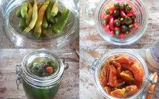 recette de Piments au vinaigre