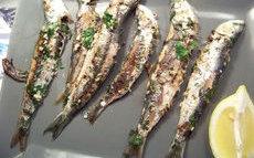 recette de sardines à la plancha