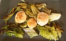 recette de Coquilles Saint-Jacques poêlées sur lit de romaine grillée – la recette
