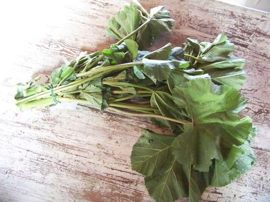 bouquet de mauves telles qu'on les trouve au marché ou dans les champs.