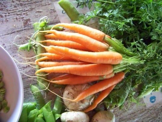 legumes-de-printemps-003_reduc