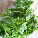 """menthe pouliot, appelée """"fliou"""" au Magreb, très utilisée dans la cuisine"""